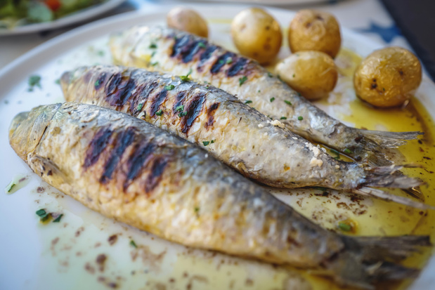 Close-up view of grilled sardine fishes served in oil with baked potatoes, Portugal